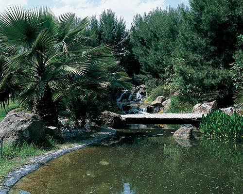 Jardin con lago