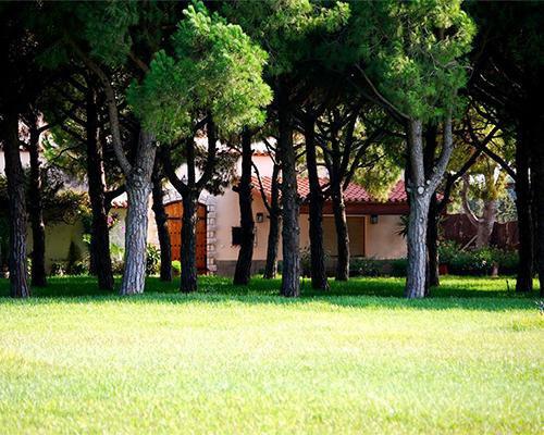 Vista de la masia