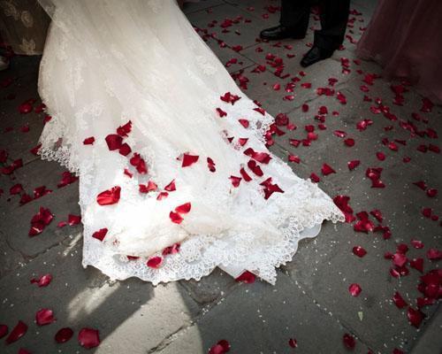 Petalos de rosa sobre la cola del vestido