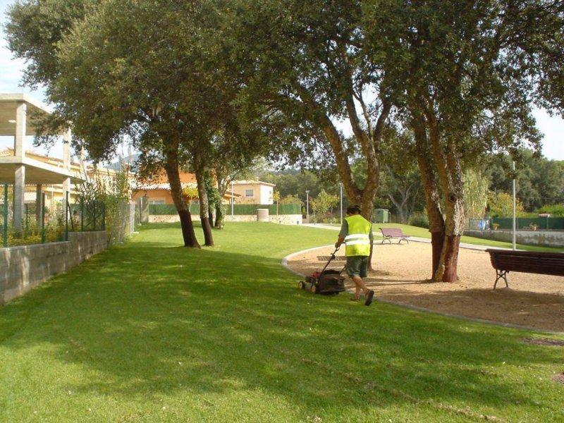 Servicio de mantenimiento de zonas verdes