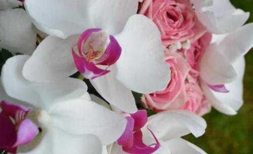 Arreglos Florales Para Bodas En Almansa Ibodascom
