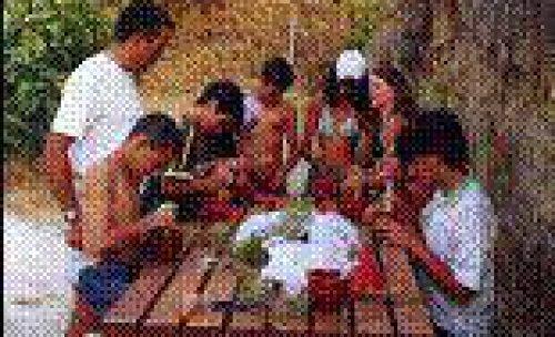 Actividades con centros educativos