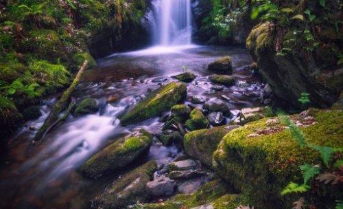 Fotos naturelaza & paisajes
