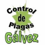 Control de Plagas Gálvez