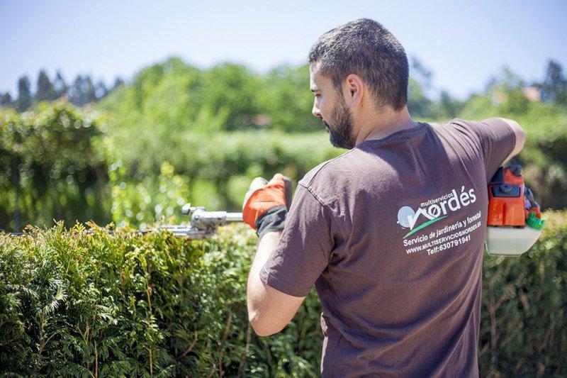 Multiservicios Nordés, jardinería, trabajos en altura y manitas en A Coruña