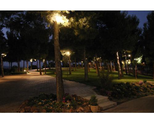 El jardín de noche