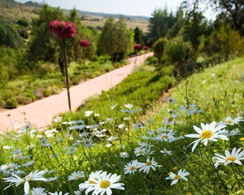 Bellos y cuidados jardines