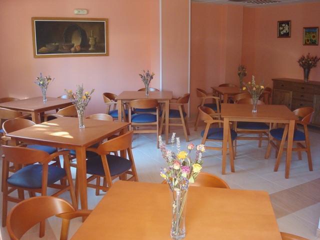 comedor Residencia Geriatrica las Rosas 913130954