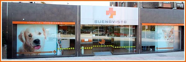 Hospital Veterinario Buenavista