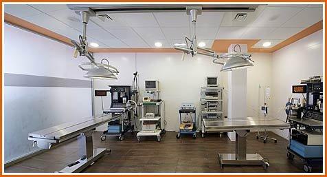 Hospital Veterinario Buenavista