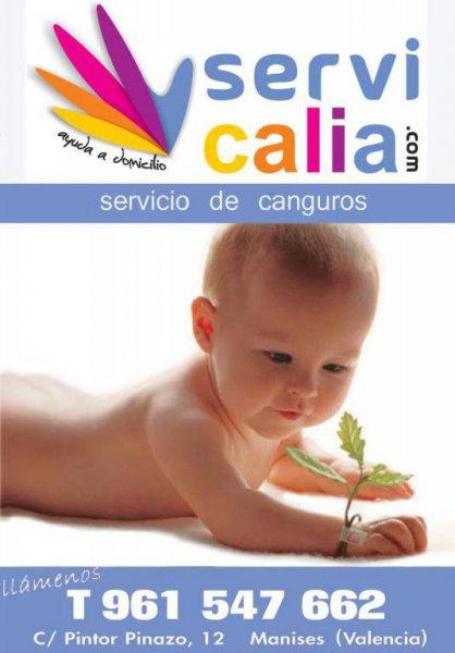 Servicalia, ayuda a domicilio en Valencia
