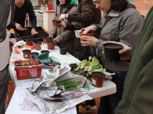Cursos y talleres huerto ecológico en Barcelona ciudad.