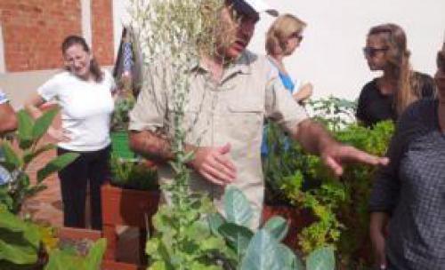 Curso huerto ecológico. Parte práctica