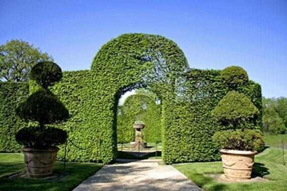 Realización de obras de jardinería