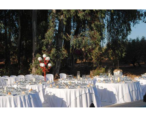 Banquete en los jardines