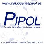 Logo pipol