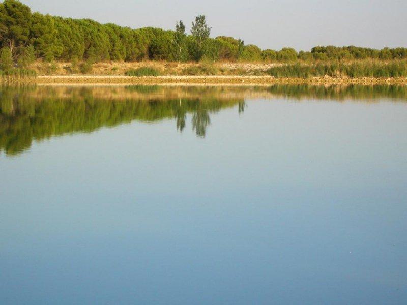 Camping Bolaso Lago