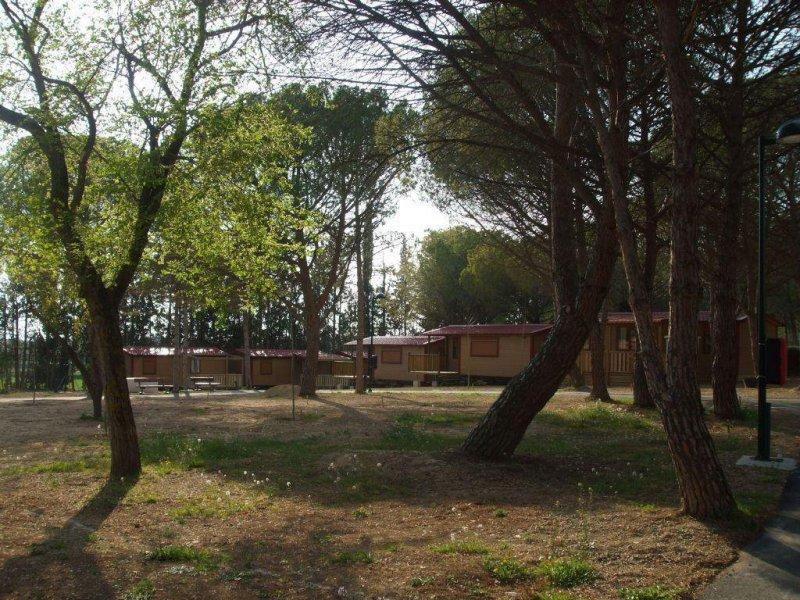 Camping Bolaso Mobil Home