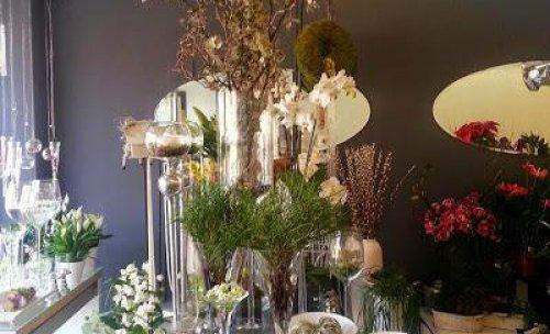 Flores y plantas Bonsai Floristas 1
