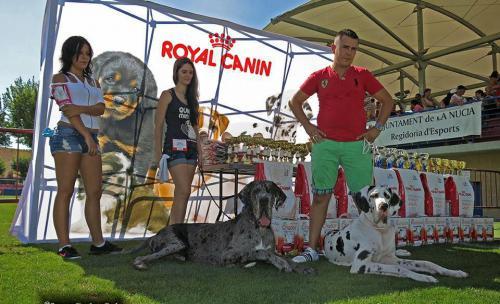 Concurso Canino Villa de La Nucia