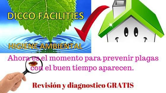 Revisión y diagnostico gratuito