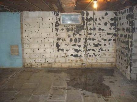 Hogar Seco, tratamiento contra humedades en A Coruña