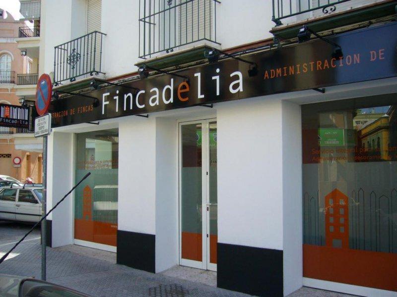 Local Fincadelia