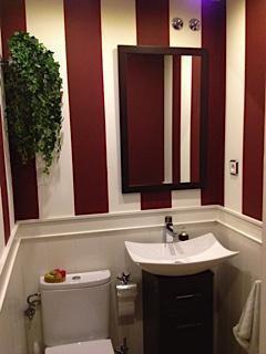 Baño moderno, zócalo lacado y pared pintada