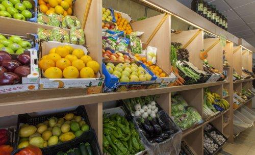 Frutas Andrea