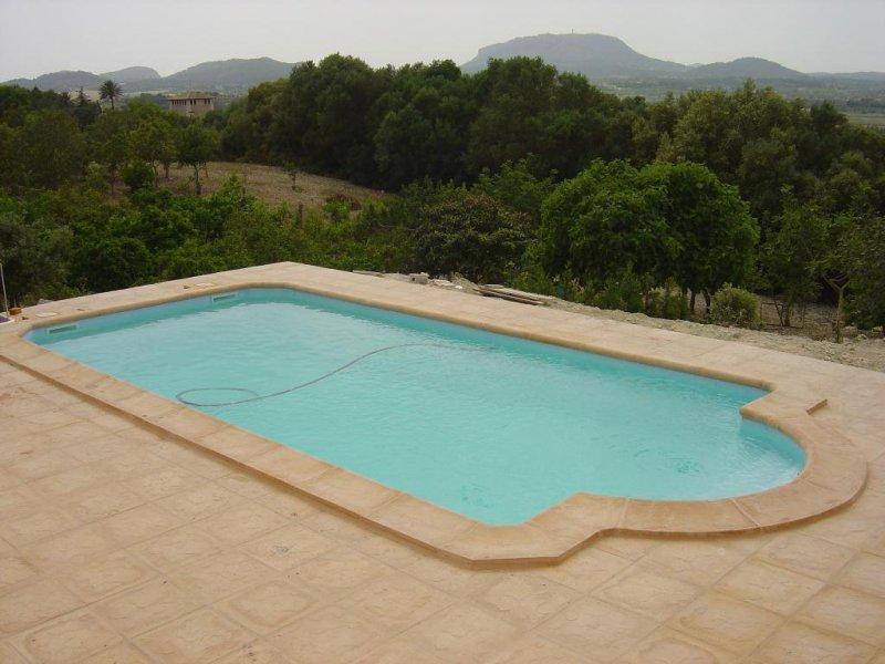 construccion de piscinas prefabricadas y gunitadas.