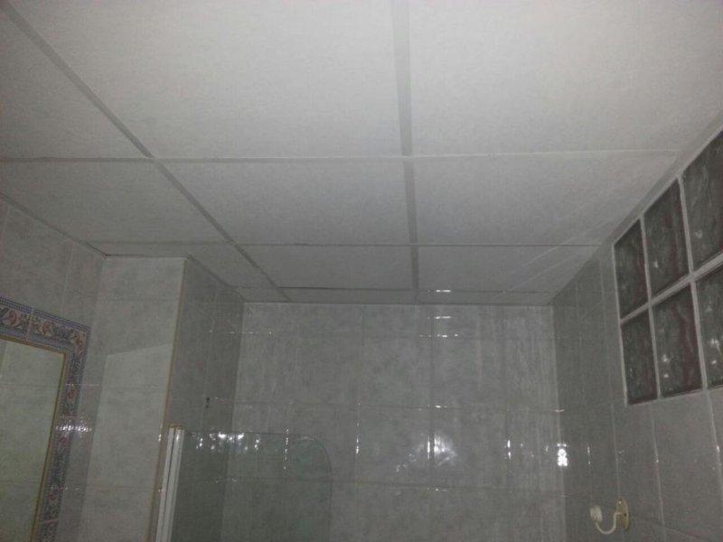 baños y techos desmontables