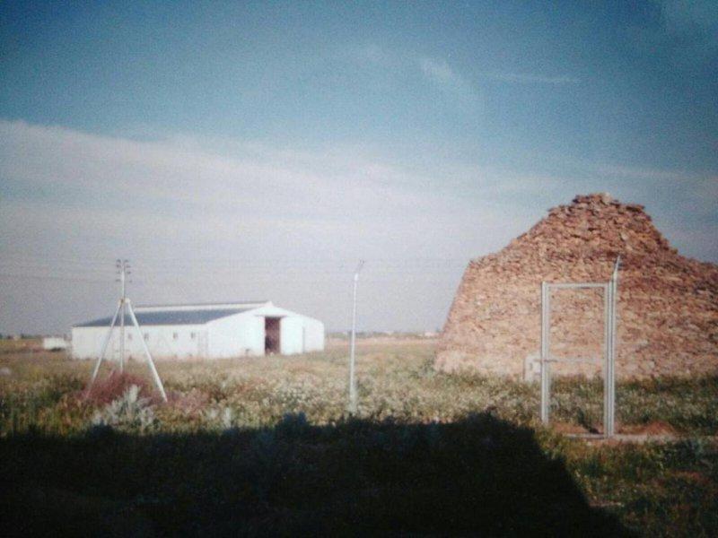 Tres naves agrícolas para el ayuntamiento de Daimiel