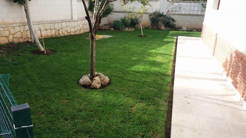 Tu Jardín