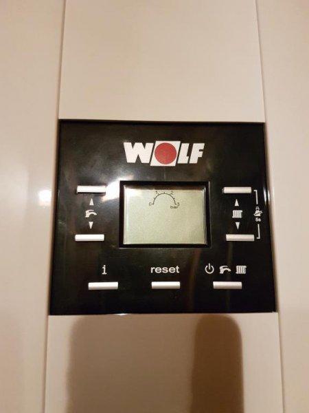 Caldera Wolf