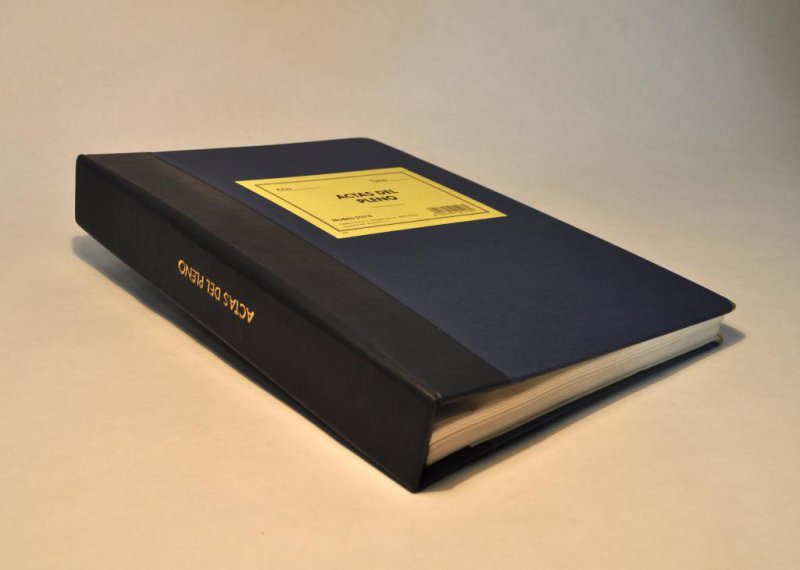 Libro de hojas móviles actas pleno o junta de gobierno local o resoluciones alcaldía, papel timbrado del Estado