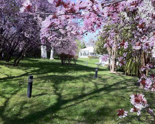 Rodeado de bellos jardines