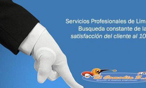 Limpiezas Comodin Madrid Servicios Profesionales Madrid
