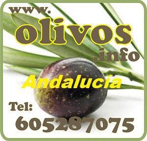 Fincas rústicas Andalucía