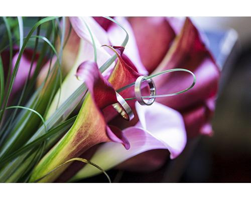 Alianzas en flores