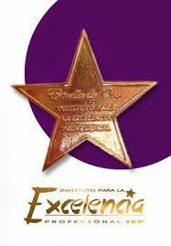 Premio Excelencia Profesinal 2015