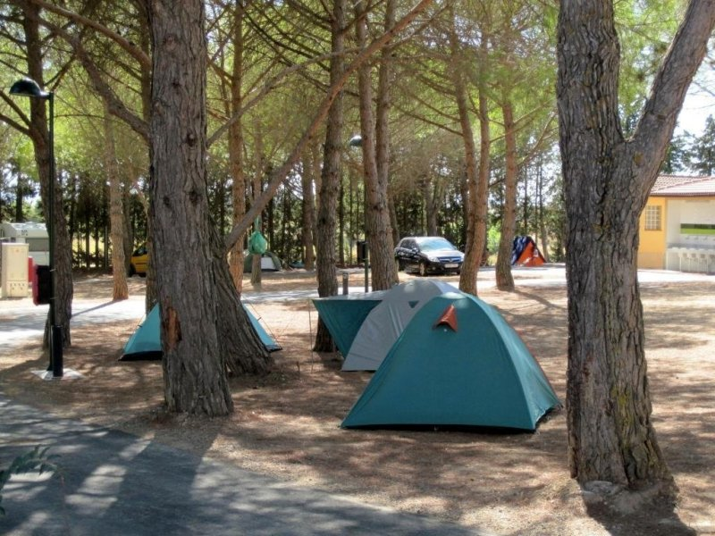 Camping Bolaso Zona Acampada