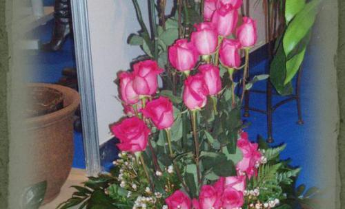 Espiral de rosas