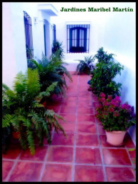 Jardines Maribel, jardinería y diseño floral en Málaga