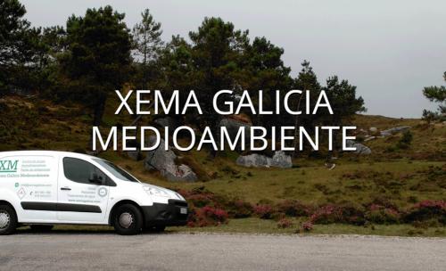 Xema Galicia