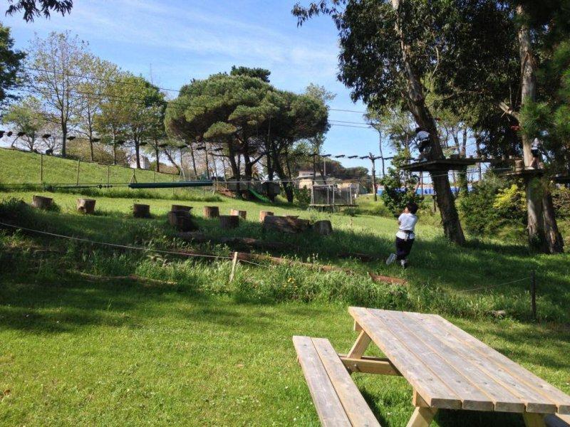 Disfruta de un entorno único junto al Sardinero