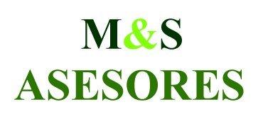 logo ms asesores