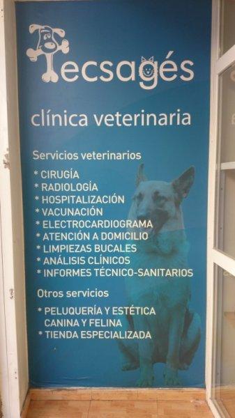 Tecsagés Clínica Veterinaria
