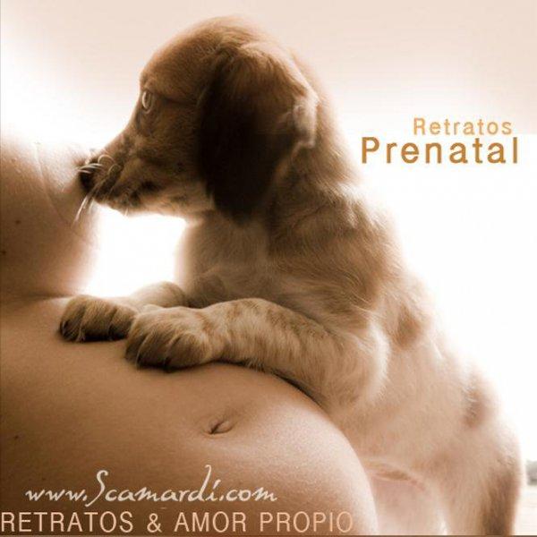 Sesiones prenatal