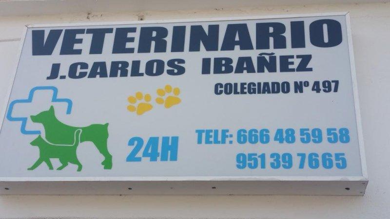 Veterinario Jose Carlos Ibáñez