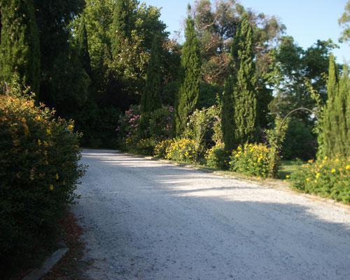 Camino de entrada